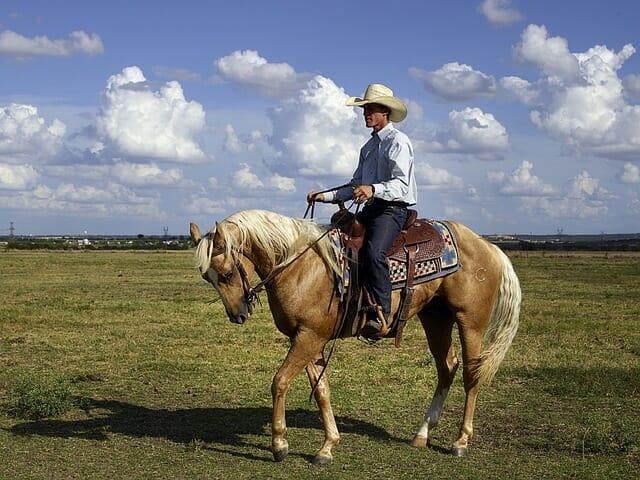 cowboy-746992_640